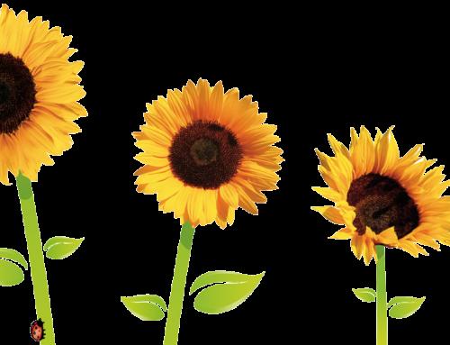 April News Letter- Spring Gardening Tips